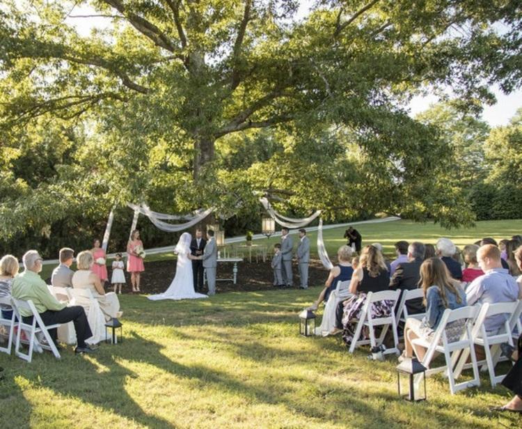 عروسی با تم کرونا؛ از مراسم جنگلی تا دستبند های نزدیکم نشو!