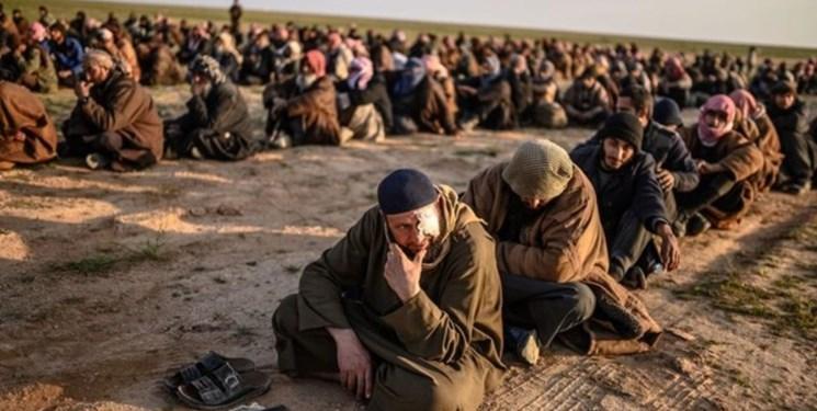کشته شدن 6 نفر بر اثر حمله داعش در عراق
