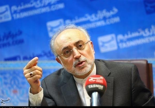 صالحی: اگر تا 3 ماه تحریم ها لغو نشود دوربین های آژانس اتمی جمع می شود
