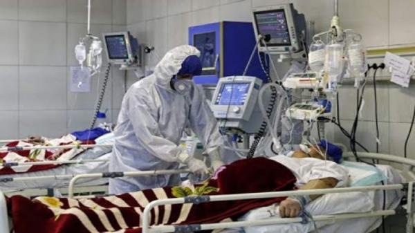کرونا 172 البرزی را راهی بیمارستان کرد، 26 نفر جان باختند